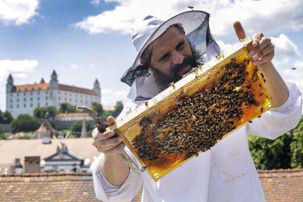 Beekeeper Róbert Kňažko looks after bees on a Bratislava roof in late June of 2020