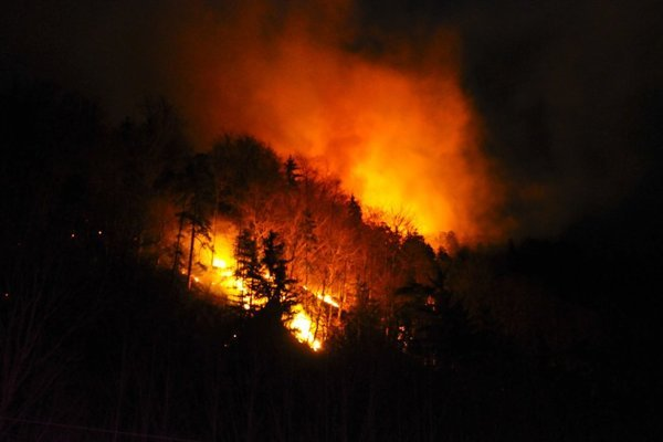 Within one day fire consumed almost 100 hectares of mixed forests near Staré Hory.
