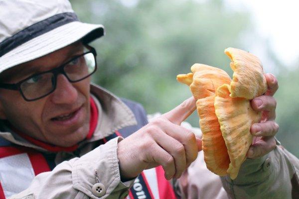 Martin Kanovský, the healthy lifestyle advisor from Nová Ves nad Váhom prefers mushrooms growing on wood.