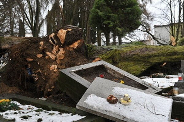 The graves of personalities of nation-wide importance, as well as many others, were damaged during a windstorm on December 2.