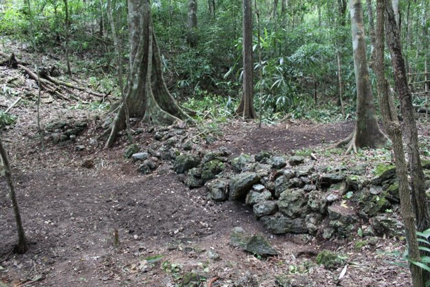 Thanks to LiDAR the Slovak archaeologists identified this manmade stone line in a dense Guatemalan jungle as part of what used to be a terrace field.