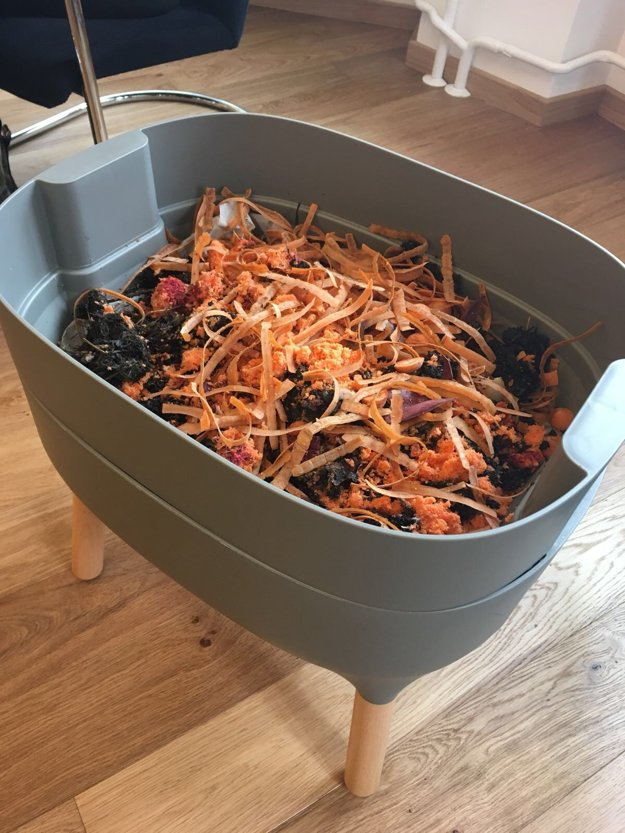 Compostable waste bin