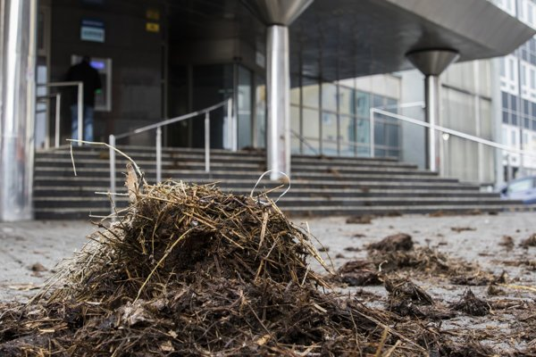 Manure in front of the Agricultural Paying Agency