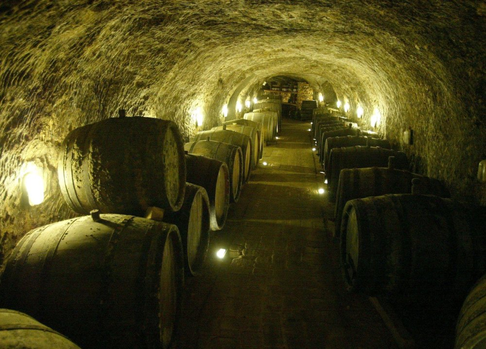 Volcanic tuffa cellars help Tokaj wines to mature their excellence.