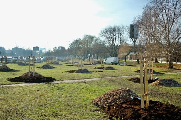 The first community orchard in Bratislava is growing in Petržalka.