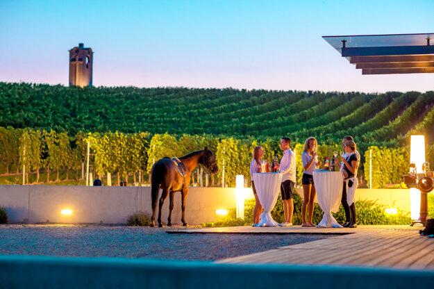 Terra Parna Winery
