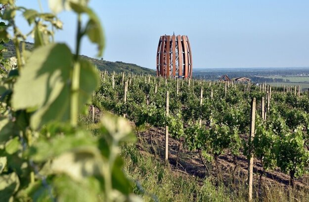 Tokaj Wine Region in eastern Slovakia.