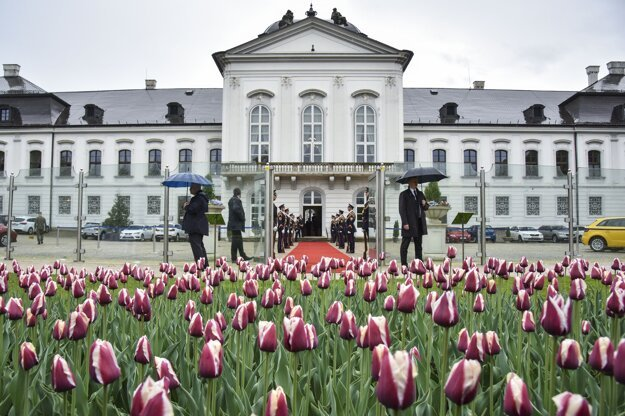 Tulips named Slovakia bloom in the garden of the Presidential Palace in Bratislava in April 2018.