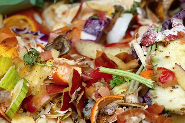 Municipalities have to create conditions for sorting kitchen food waste.