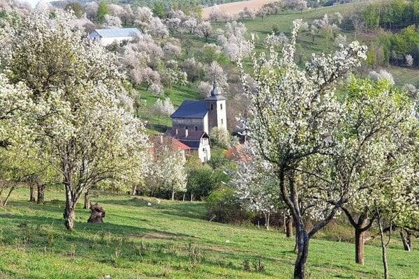 Springtime in the Slovak countryside.
