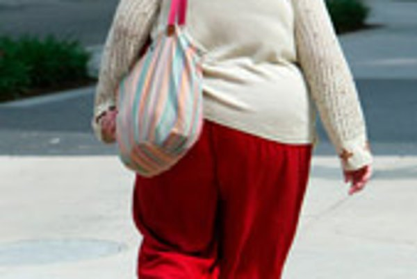 Unhealthy eating habits among Slovaks could lead to obesity