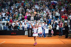 Cibulková has bigegst credit for the Slovak victory at Fedcu 2016.