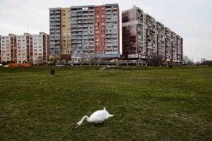 Petržalka is the epitome of communist-era architecture.