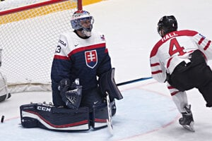 Slovak goalie Július Hudáček (L) gets a goal, aas Canadian Taylor Hall watches in the Saturday match of B Group in St Petersburg.