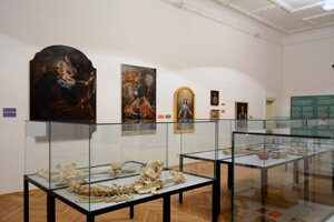 Paintings, skeletons and other acquisitions in SNM