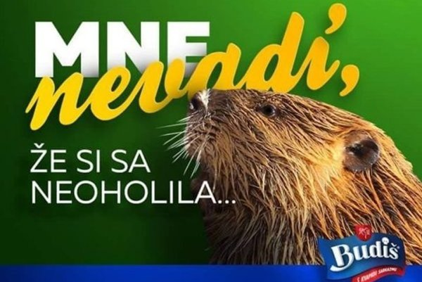 I do not care you have not shaved - says the beaver in a hint recalling his hairy character, in a Budiš ad.
