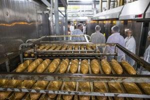 Bakery, illustartive stock photo