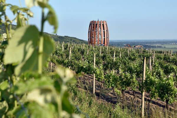 An observation tower, reminiscent of a big barrel, is a favourite tourist attraction in the Tokaj region.