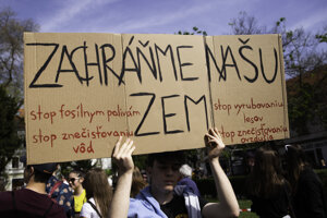 A Fridays for Future Slovakia protest.