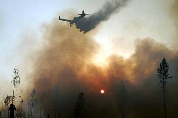 An extensive fire hit the High Tatras on the last weekend of July 2005.