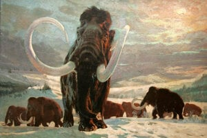 Prehistoric animals such as mammoths come to life in films thanks to digital technologies, but few artists have portrayed them as artistically as Zdeněk Burian.