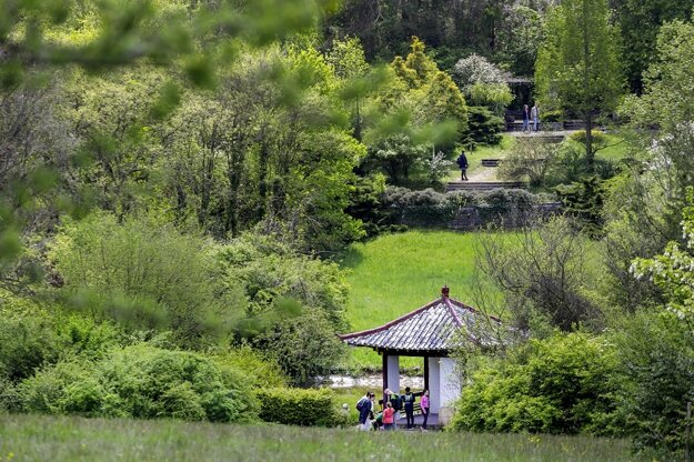 The Mlyňany Arboretum of the Slovak Academy of Sciences is a protected area in the villages of Tesárske Mlyňany and Vieska, near Zlaté Moravce. It is open to the public all year round, except for some holidays.