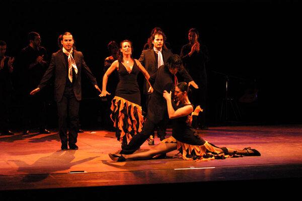 FlamenTango by flamenco dancer María Serrano from Sevilla will be the highlight of the Iberica festival.