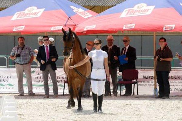 Horse show in Topoľčianky stud-farm