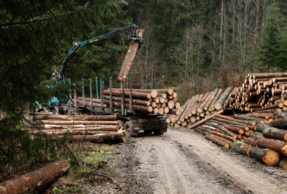 Logging in Muránska planina.