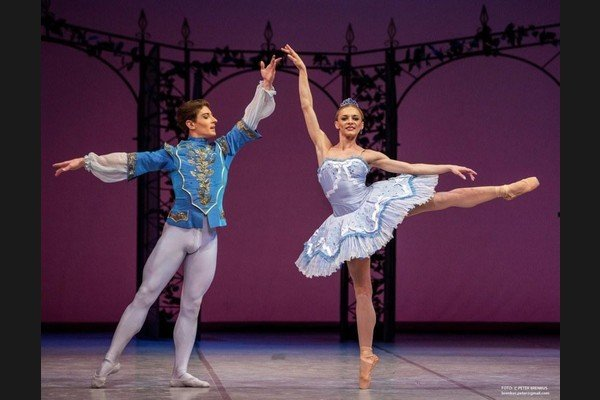 The special concert includes excerpts from SND ballets.
