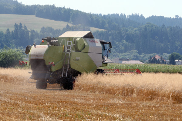 This year the harvest of cereals will be lower in Slovakia.