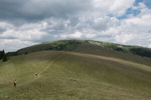 Although not steep – the elevation gain was around 200 metres – it was a demanding walk up to Ploská.