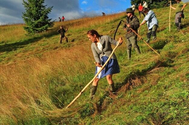 Volunteers scythe the Kopanecké lúky meadows near the village of Vernár in the Poprad district.
