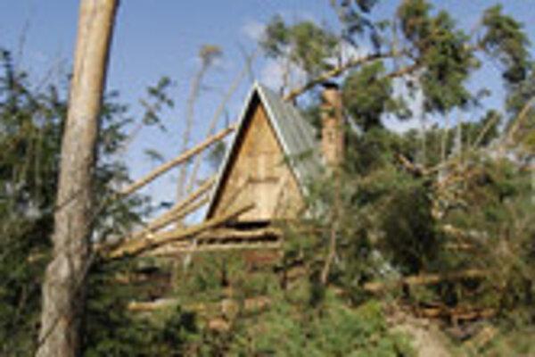 Emma uprooted thousands of trees across Slovakia.