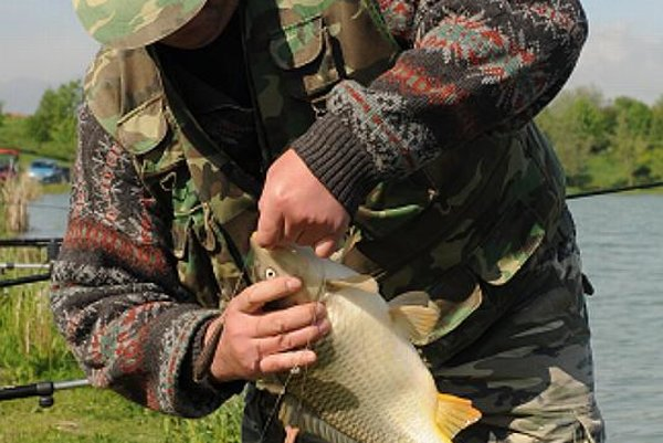 More fun than maths? Slovakia's only school of fishing may soon cast its last line.