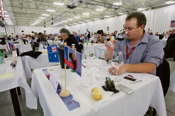 At the Bratislava international competition, 305 expert wine-tasters judged over 8,000 wines.