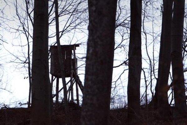 Hunters' high-seat, illustrative stock photo.