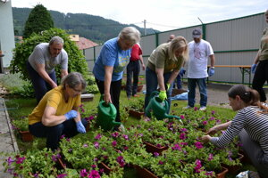 Volunteers in the senior house HARMONIA in Žilina devoted their time and energy to flowers.