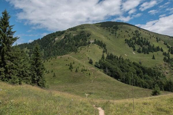 The soft scenery of the Greater (Veľká) Fatra