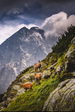 Spectacular Slovakia Travel Guide: the High Tatras