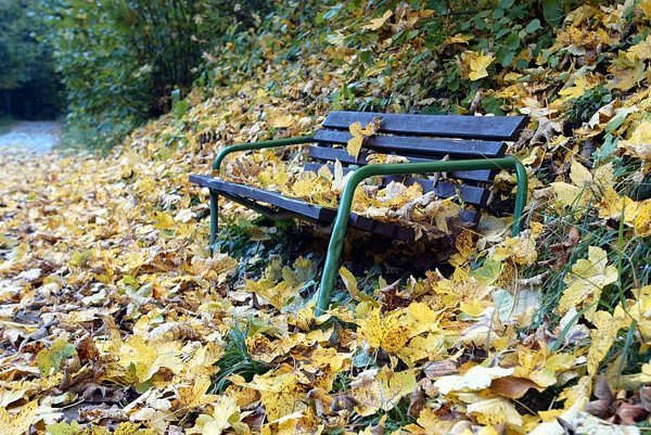 November is listopad, the month of falling leaves, in the Czech language.