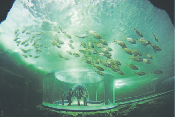 """The Korean city of Yeosu is currently hosting Expo 2012, under the theme """"The Living Ocean and Coast"""""""