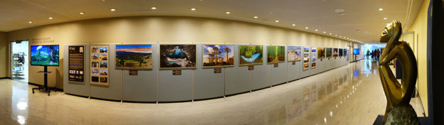 Exhibition of Filip Kulisev's photos in UN headquarters in New York.