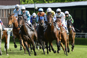 Horse races, illustrative stock photo