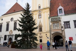 Christmas tree on Main Square in Bratislava.