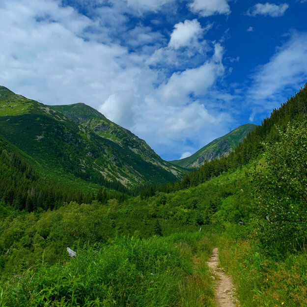 A path to the Klin peak in the Western Tatras.
