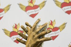 The Roma Spirit award.