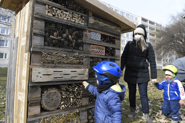 Insect hotels are made of waste material. There is gravel and rock gardens on the roof.