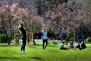 People can report insufficiently mowed lawns on the city of Bratislava's official website.
