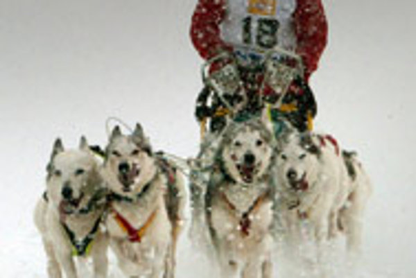 Dog sled racing has brought Donovaly some fame.